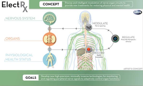 美国计划研发新型人体自我修复医疗芯片