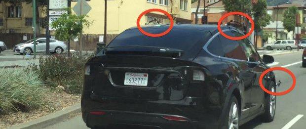 特斯拉原型车曝光 迷之突起惹人注意