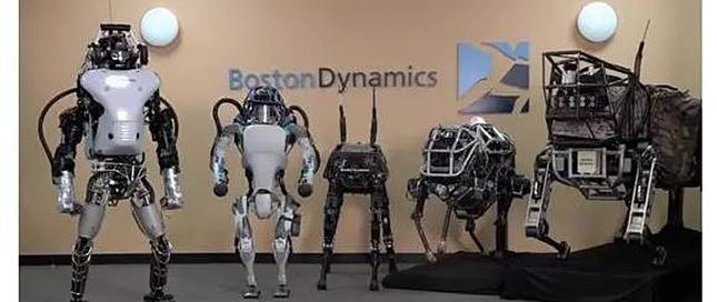 还记得那些被推倒的平衡机器人吗?