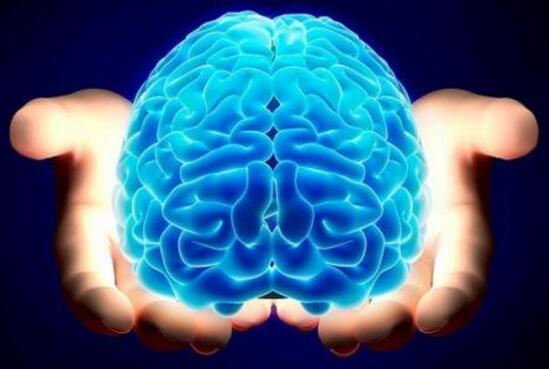 """""""美的大脑""""为人工智能创新提速"""