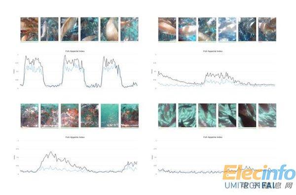 UMITRON推出首款实时海洋鱼类食欲检测系统
