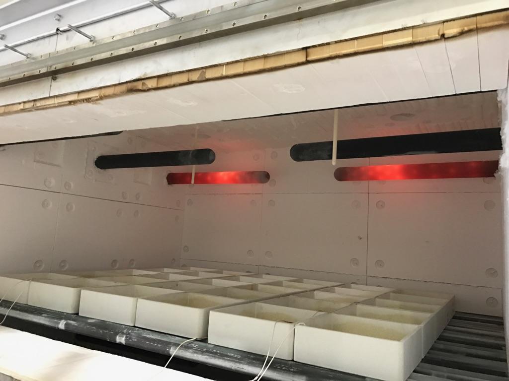 用于生产锂离子电池电极的全球首款连续式气体燃烧炉C-SERT-RHK面市
