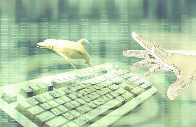 NovaFori将为CIX提供在线市场技术